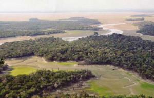 Danau Sentarum, Danau Unik dan Langka Di Kalimantan Barat
