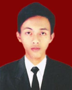 M. Rois Aminullah