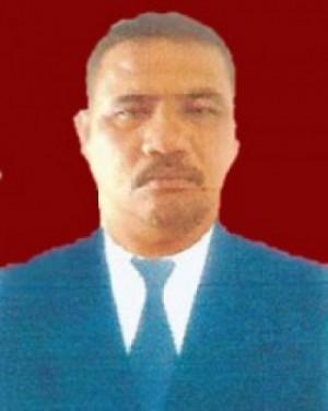 Fauzi Saragih