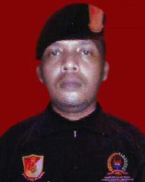 M. Ali Ismail