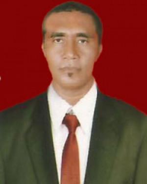 Usman Karepesina
