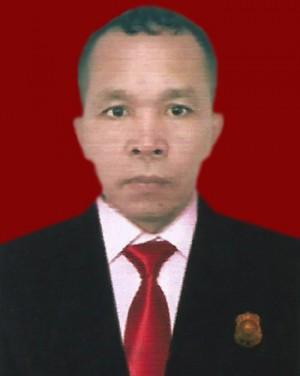 Usman Lubis